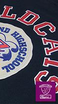 EmbroideryStudio e4 Elements Team Names Advanced